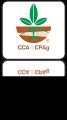 CCA App